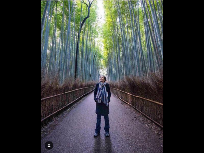 Магията на бамбуковите гори Арашияма /СНИМКИ/