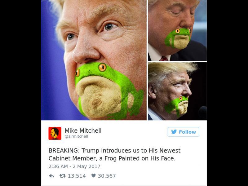 Квак! Брадичката на Тръмп като жаба /СНИМКИ/