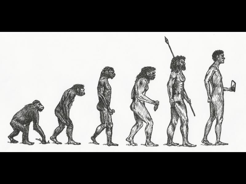 Находка променя представата за появата на Хомо сапиенс