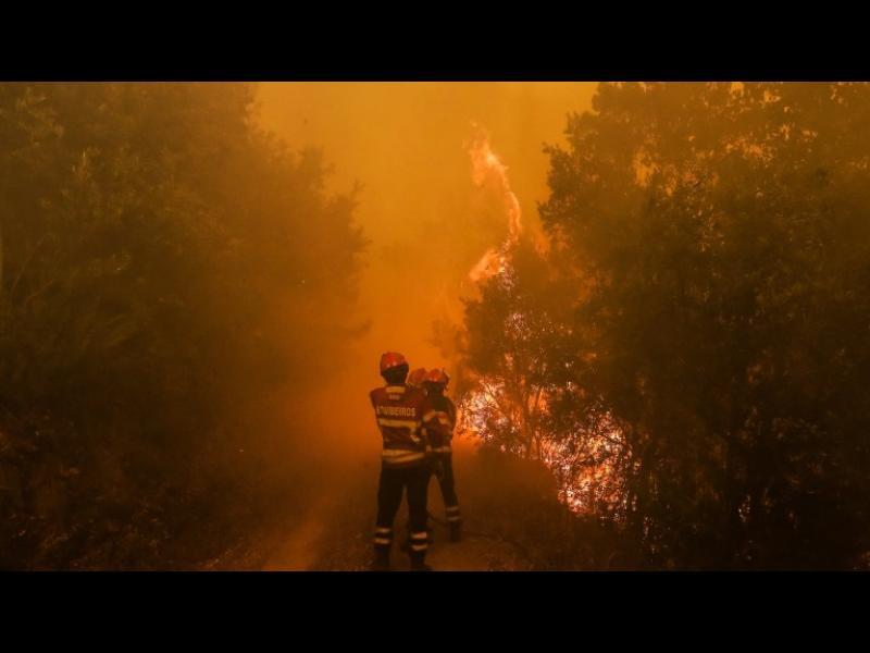 Огнената стихия в Португалия е в резултат на криминални действия