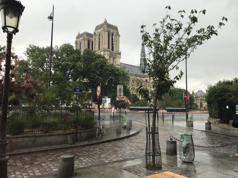 """Стрелба в центъра на Париж, блокираха катедралата """"Нотр Дам"""" (ВИДЕО+СНИМКИ)"""