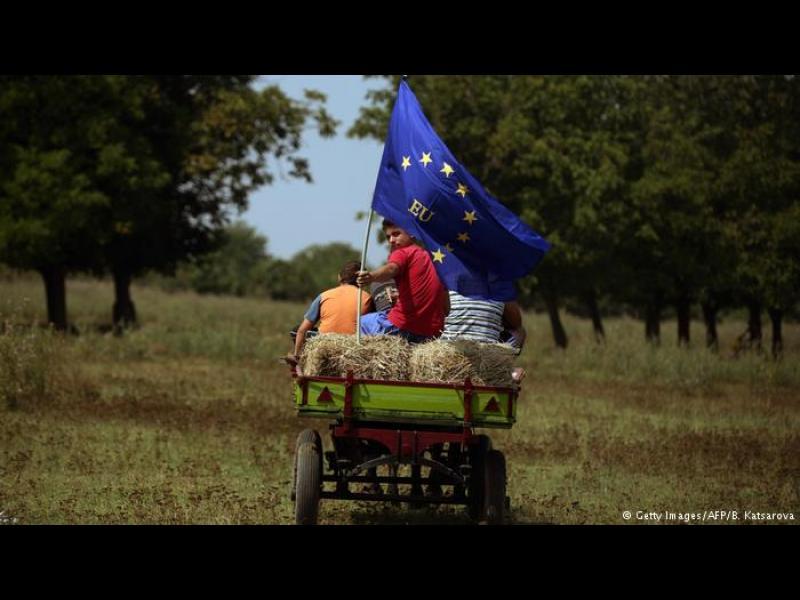 За какво сме им всъщност на европейците?