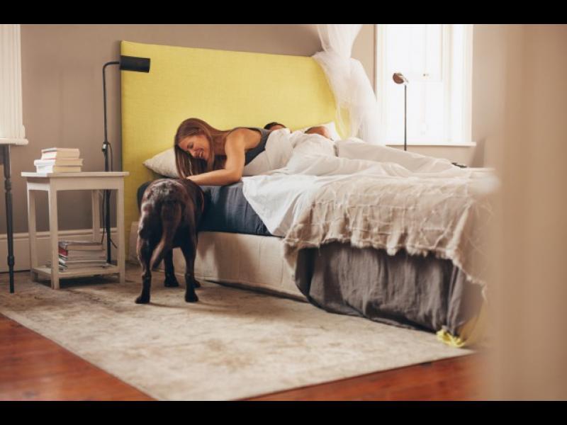 9 гадни факта за твоята спалня