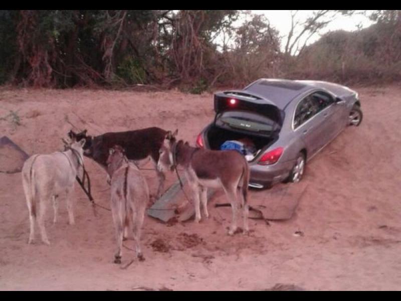 Как се краде Mercedes с магарета? /СНИМКИ/