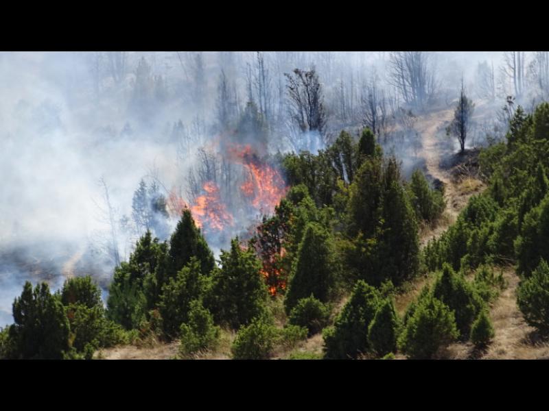 Пожарът в Кресненското дефиле е частично локализиран