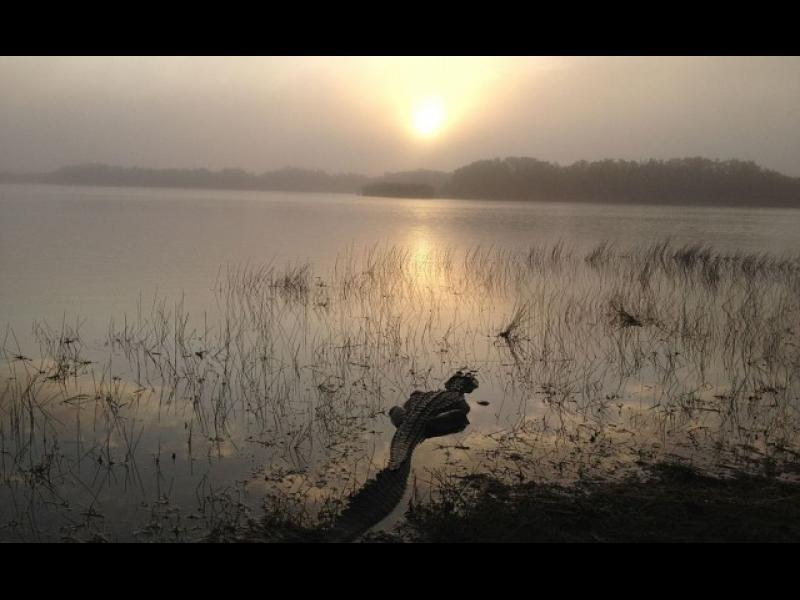 10 епични, заплашени от изчезване места