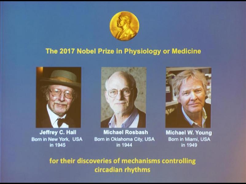 Нобеловата награда за медицина - за откритие за биологичния часовник - картинка 1