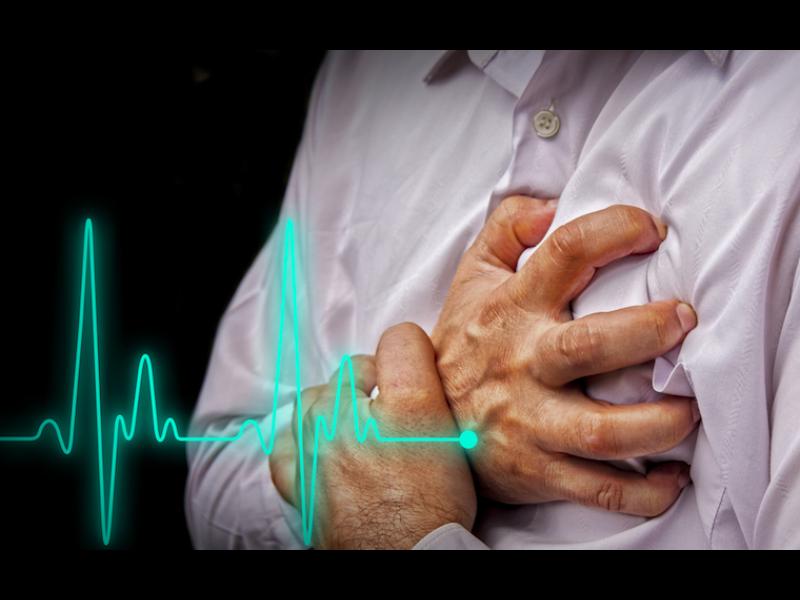 Бактерии, а не мазната храна са виновни за сърдечно-съдовите заболявания?