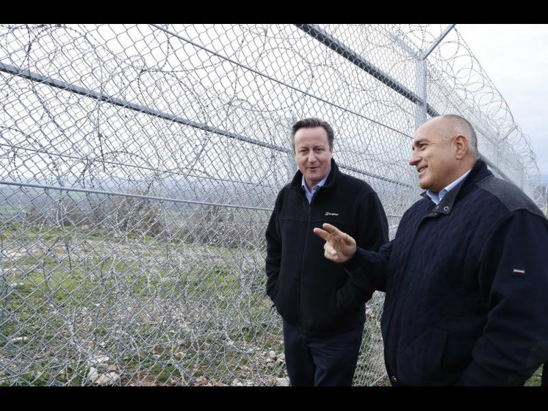 КОЙ наднича през оградата? - картинка 1