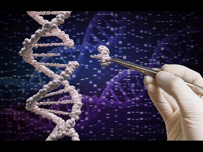 Напредък в редактирането на гени обещава лечение на тежки заболявания