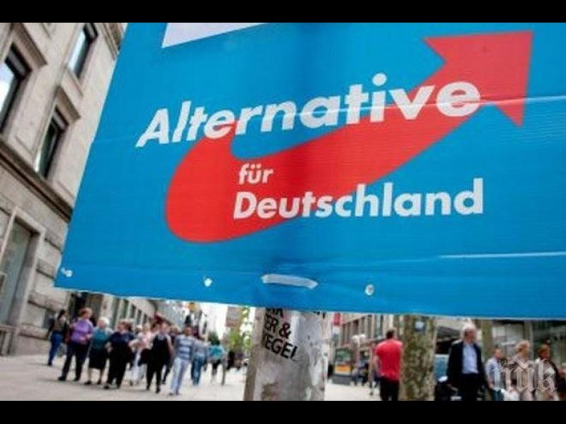 """Крайнодясната """"Алтернатива за Германия"""" стана втора политическа сила"""