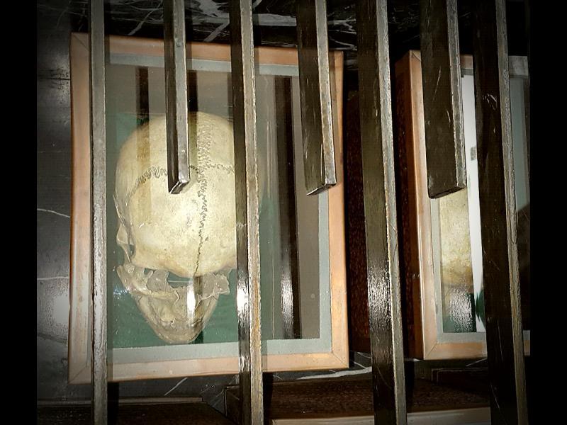 Още малко за Ботев, 198 четници и 18 черепа