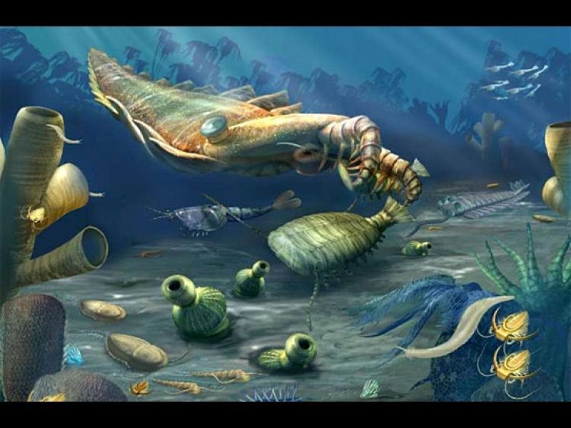 Първите животни на Земята предизвикали глобално затопляне
