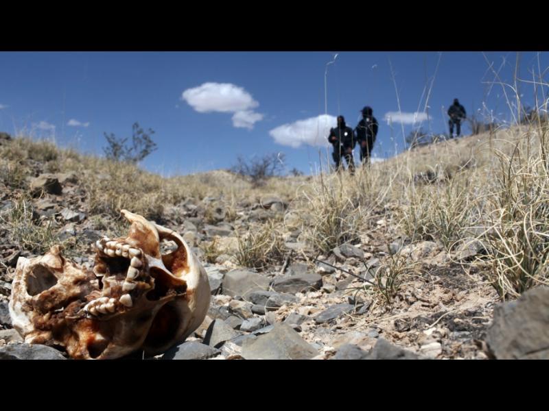 166 трупа в масови гробове в Мексико