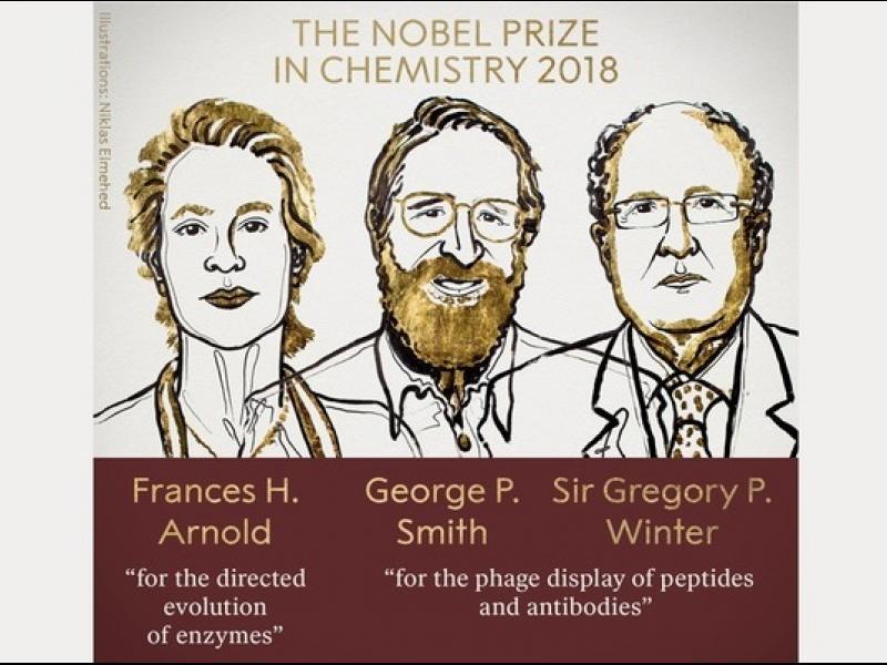 Учени, овладели еволюцията, взимат Нобеловата награда за химия - картинка 1