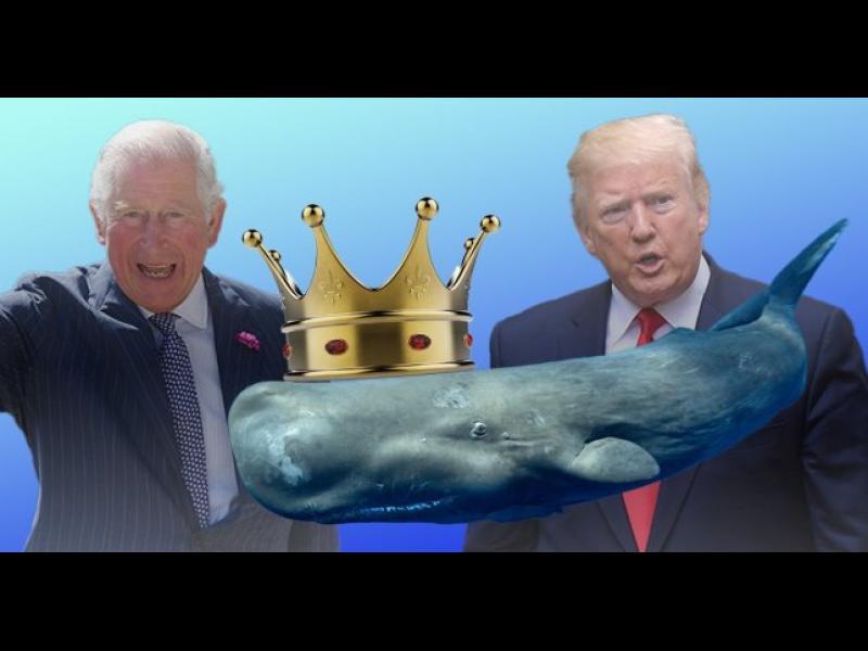 Правописен гаф на Тръмп преименува британския престолонаследник - картинка 1