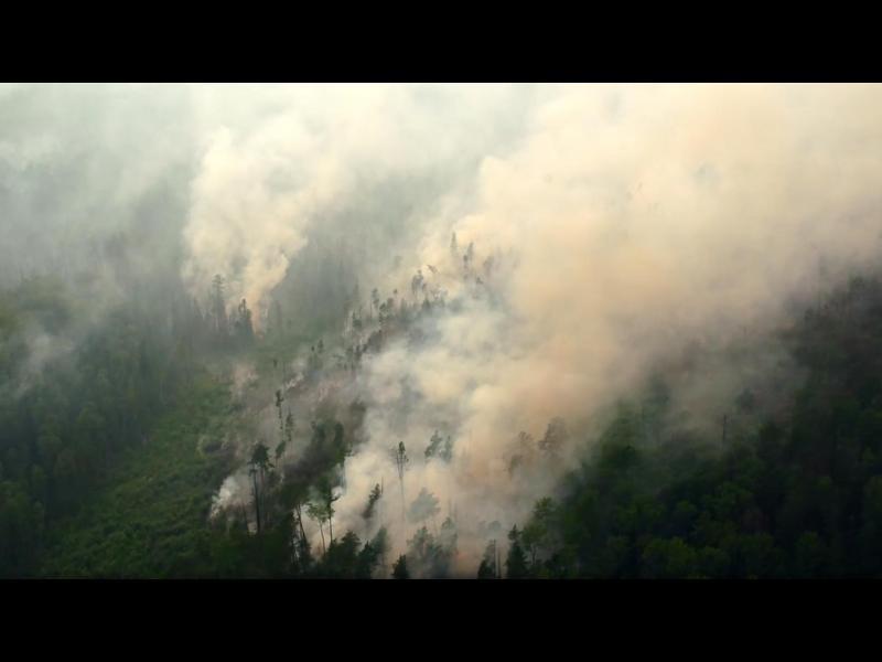 В Сибир вече горят 4.5 милиона хектара гори, гасят се само 6% от пожарите