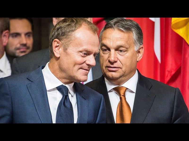 Туск поиска ЕНП да изгони партията на Орбан