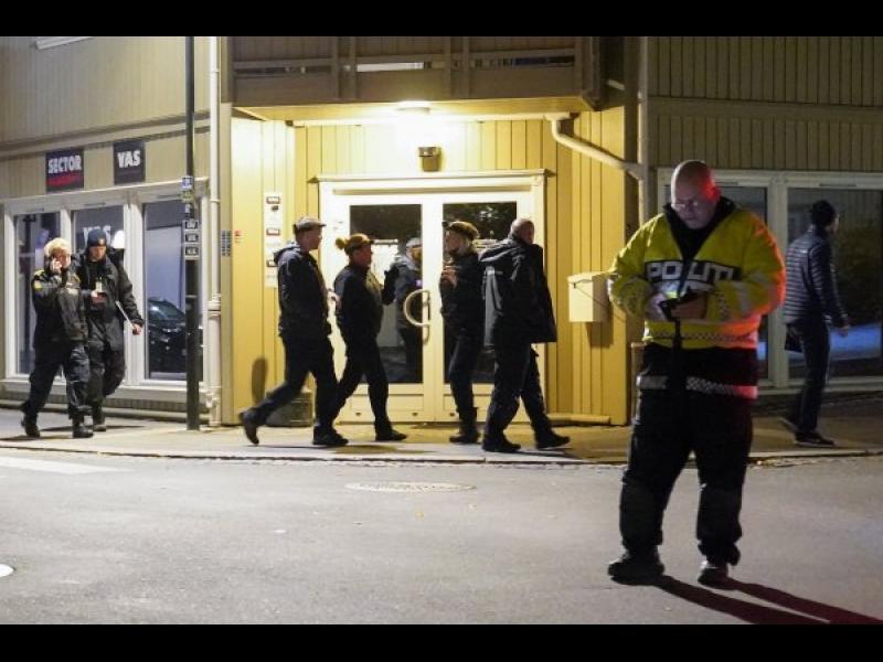 Петима загинаха при нападение с лък и стрели в Норвегия